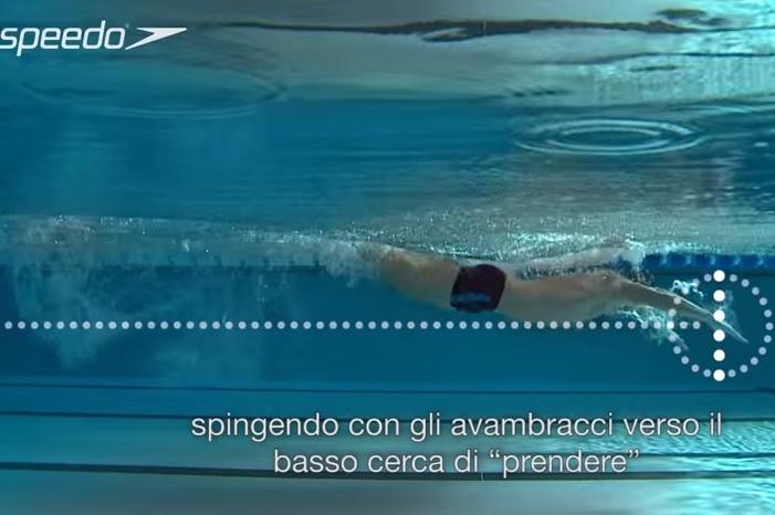 Tecnica_bracciata_nuoto_Delfino