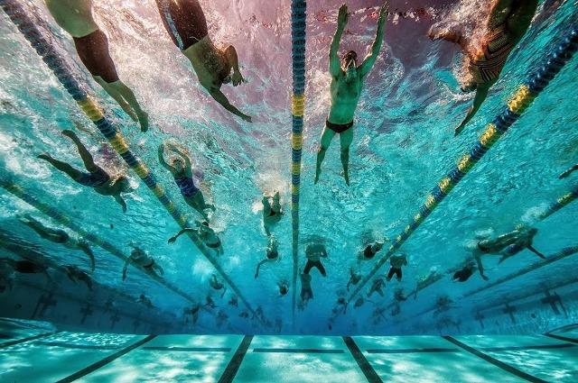 Le buone regole per condividere una corsia di nuoto libero - Piscina trezzano sul naviglio nuoto libero ...